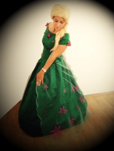 Elsa fever - animator petreceri copii Iasi